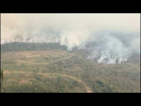 Forest fires in Brazil's Pantanal wetlands