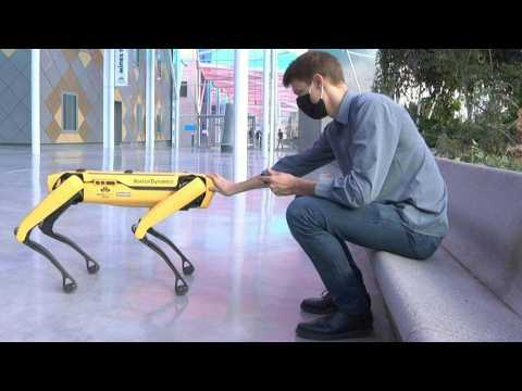 Scar the robot-dog to boldly go where no man has gone before?