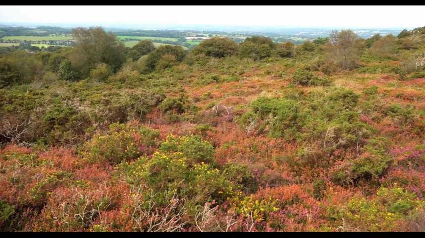 Thumbnail Locarn : les landes retrouvent une seconde vie