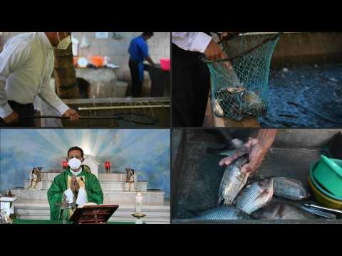 Salvadoran priest rears tilapia to stave off community hunger, pay church fees