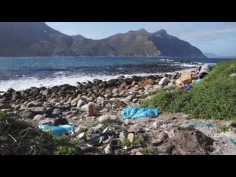 World Clean-Up Day in Cape Town