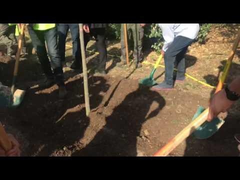 """Les footballeurs Andy Delort et Arnaud Souquet plantent un arbre au profit de l'opération """"1 but = 5 arbres"""""""