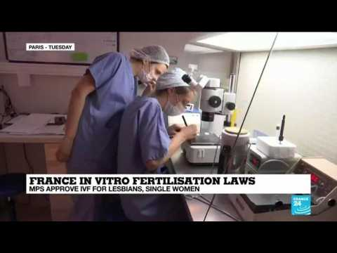 France: MPS approve in vitro fertilisations for lesbians, single women