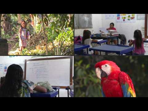 Voices from the Amazon: The indigenous teacher