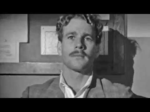 La Barbe à papa - Bande annonce 1 - VO - (1973)