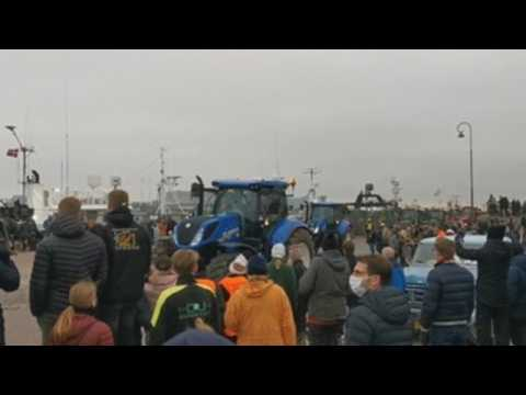 Danish farmers protest against the Government for the slaughter of minks