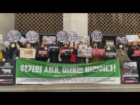 World Vegan Day marked in South Korea