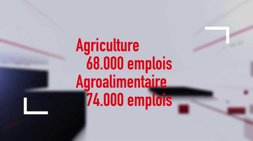 Thumbnail Agriculture bretonne : un modèle à reconstruire ?