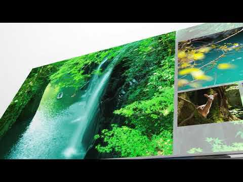 Picture Life Printed With High-Quality Photo Books by Canon!