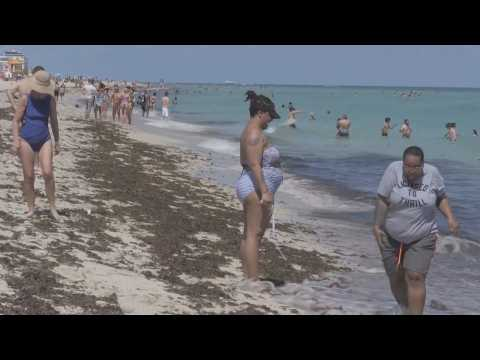 """Miami Beach on high alert for """"spring breakers"""""""