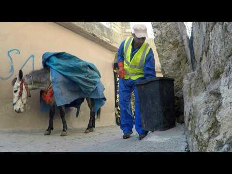 A rubbish job for donkeys in Iraqi-Kurdish town