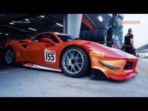 APAC Sepang 2019 Race 1 Highlights