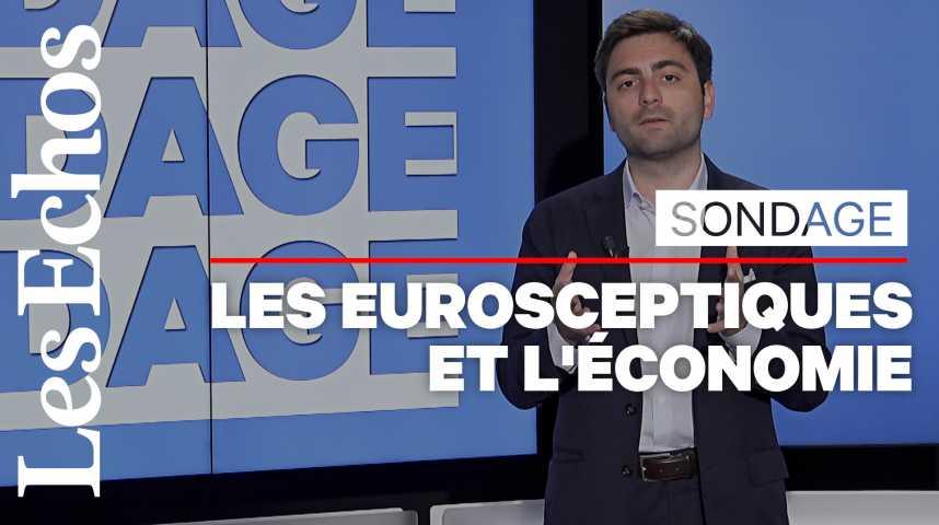 Illustration pour la vidéo Européennes : les Français plutôt inquiets des conséquences économiques d'une victoire des populistes