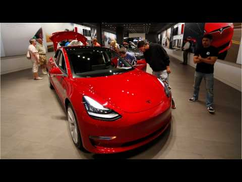 Elon Musk Said Tesla Cars Will Probably Be Better Than Humans At Driving By End Of 2019