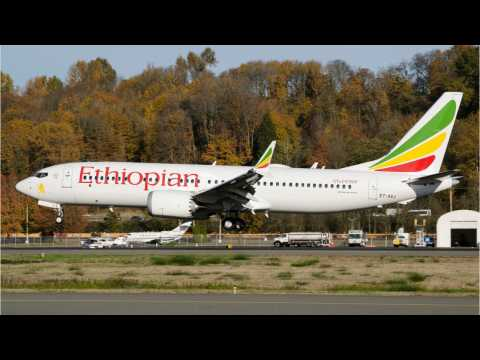 Ethiopia Transport Ministry To Release First Report On Boeing 737 MAX Crash