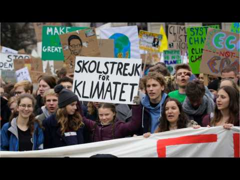 Millennials And Gen Z Are Charging Forward In The Climate Battle