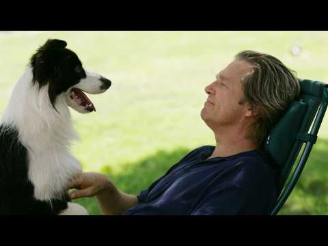 A Dog Year - Bande annonce 1 - VO - (2009)