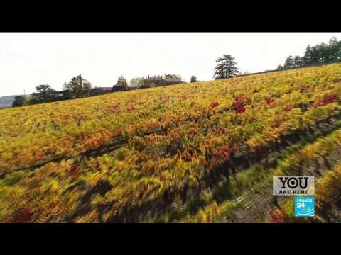 France's Beaujolais region: More than just wine