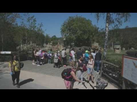 Prague Zoo reopens