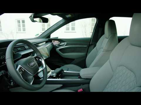 The new Audi e-tron Sportback Interior Design in Floret silver
