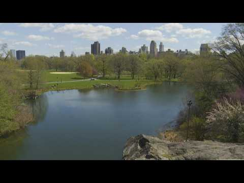 Central Park keeps New Yorkers 'sane' during coronavirus lockdown