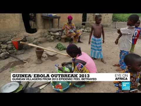AFCON Final 2019: Football fans brace for Senegal-Algeria face off