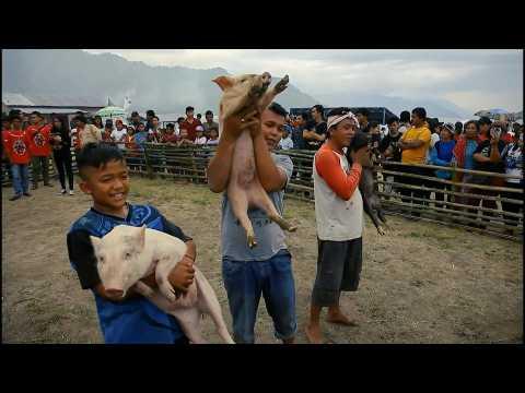 Indonesia's halal tourism bid faces pig pushback