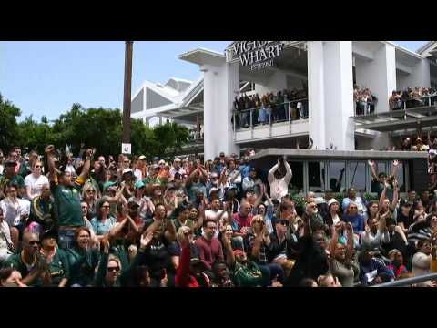 Springbok fans cheer on South Africa in Rugby World Cup final