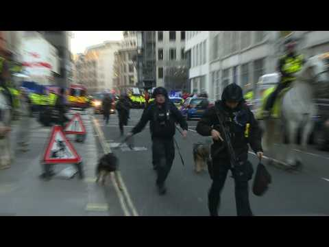 Officers and police dogs at London Bridge after stabbing