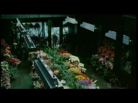 The Hours - Extrait 2 - VO - (2002)