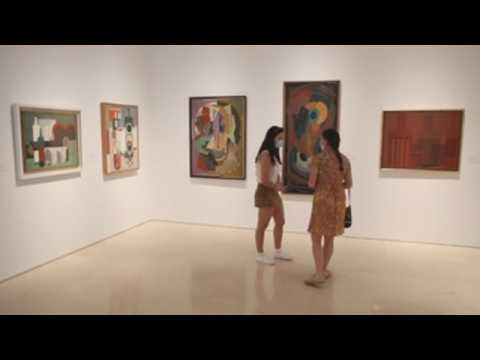Malaga's Picasso Museum reopens after over two months of closure