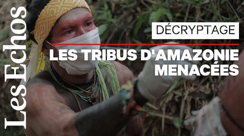 Illustration pour la vidéo Pourquoi le coronavirus est la nouvelle menace qui plane sur l'Amazonie