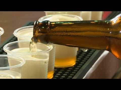 Israeli researchers drink to old times with ancient-style beer