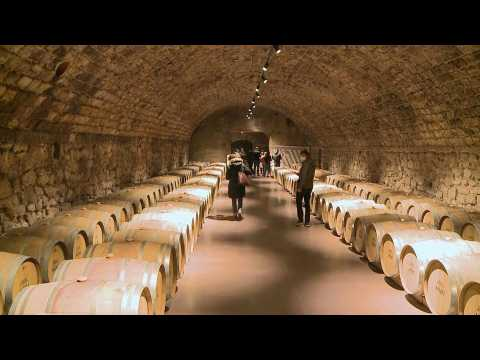 Moldova wine tourism struggles to survive pandemic restrictions
