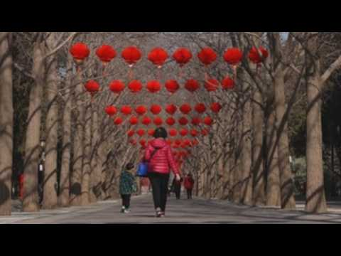 Chinese park decorated with lanterns for Lunar New Year celebrations