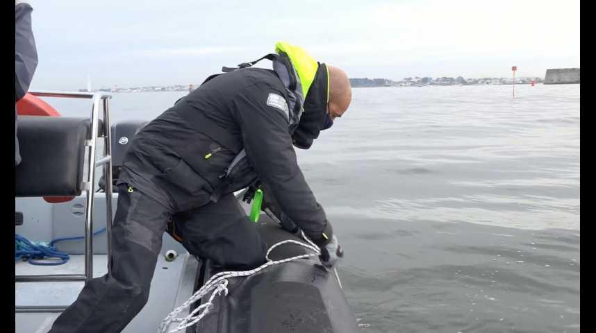 Thumbnail Lorient : le plancton à la loupe