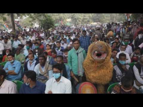 Indian farmers continue to protest against farm reforms