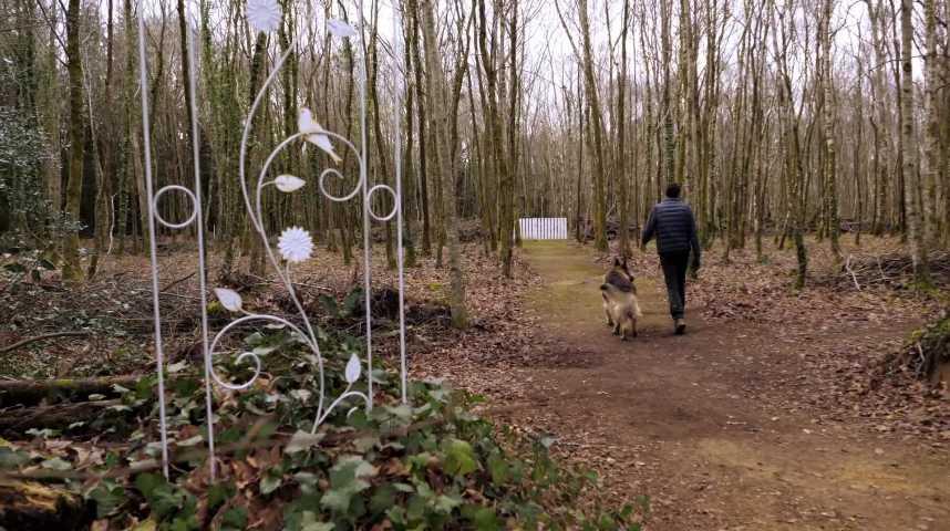 Thumbnail Un cimetière pour les animaux à Langolen